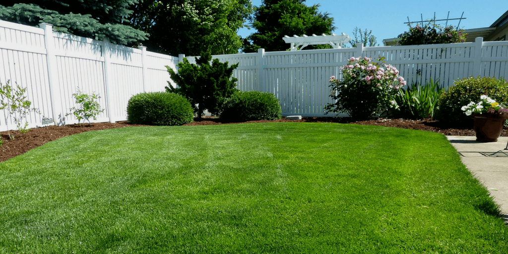 a lawn surrounded by a fence